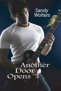 Another Door Opens Book Cover